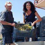 hesperia-red-white-wine-making-producing-south-italy-anna-della-porta-14