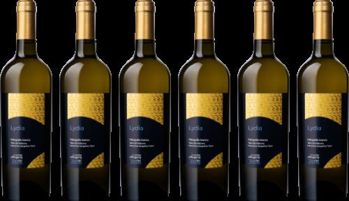 hesperia-wine-bottles-6x-white-wine-lydia-500px